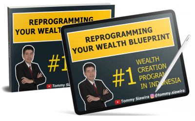 Reprogramming Your Wealth Blueprint